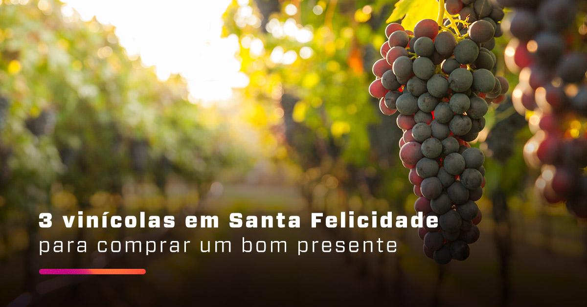 3 vinícolas em Santa Felicidade para comprar um bom presente